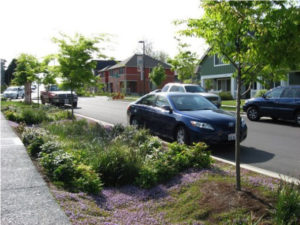 image: what is a bioswale